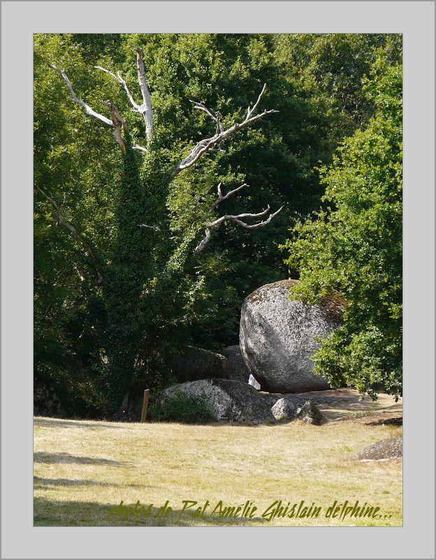 Vacances-Ghislain-La-Ronde-carpes-474-border.jpg