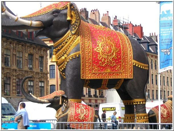 lille3000elephant