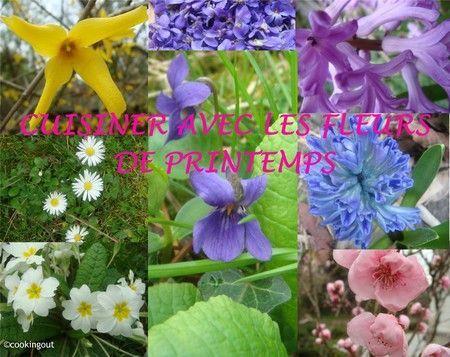 cuisine_fleurs