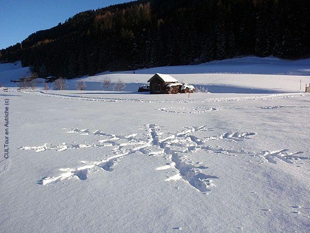 Land-art-flocon-sur-la-neige.JPG