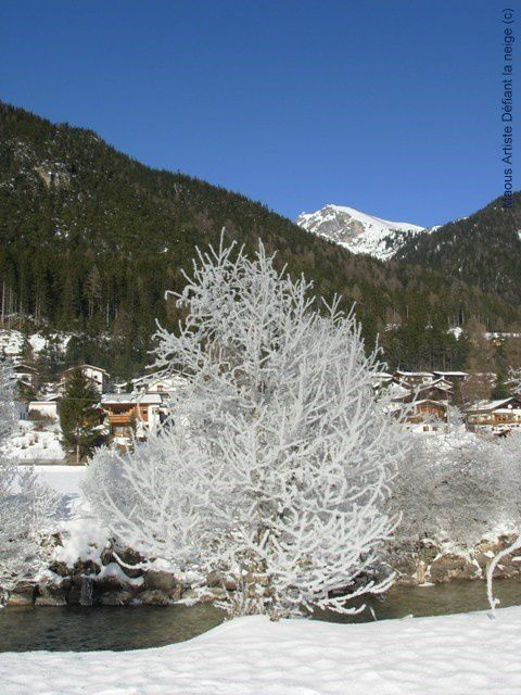 Paysages-tyroliens-sous-la-neige--trins-.JPG
