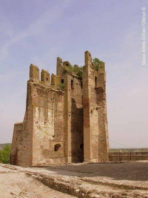Valeggio-sul-Mincio---chateau-Scaligero.JPG