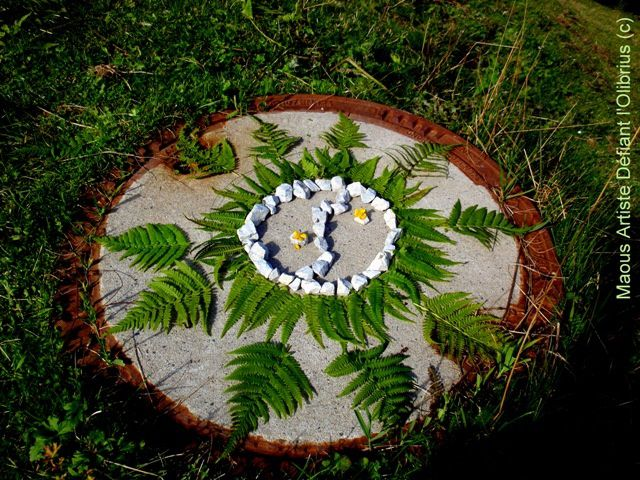 Album mandala land art maous artiste d fiant l 39 olibrius for Artiste nature