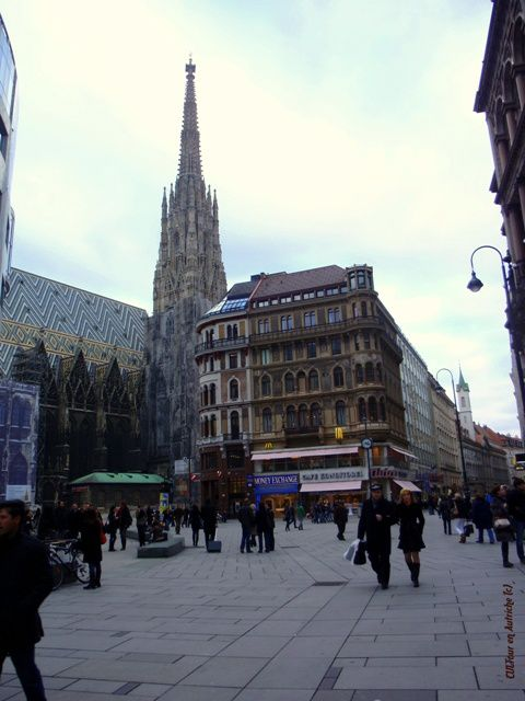 cathedrale-Saint-Etienne-Stephansdom-en-allemand.JPG