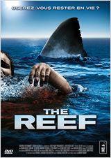 the_reef.jpg