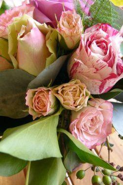 rosejosie.jpg
