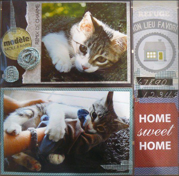 home2-copie-1.jpg