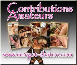 module contributions amateurs