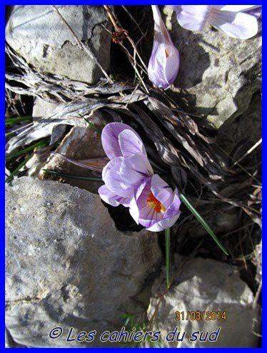 voie-Gombault-03-2014 0702 [640x480]