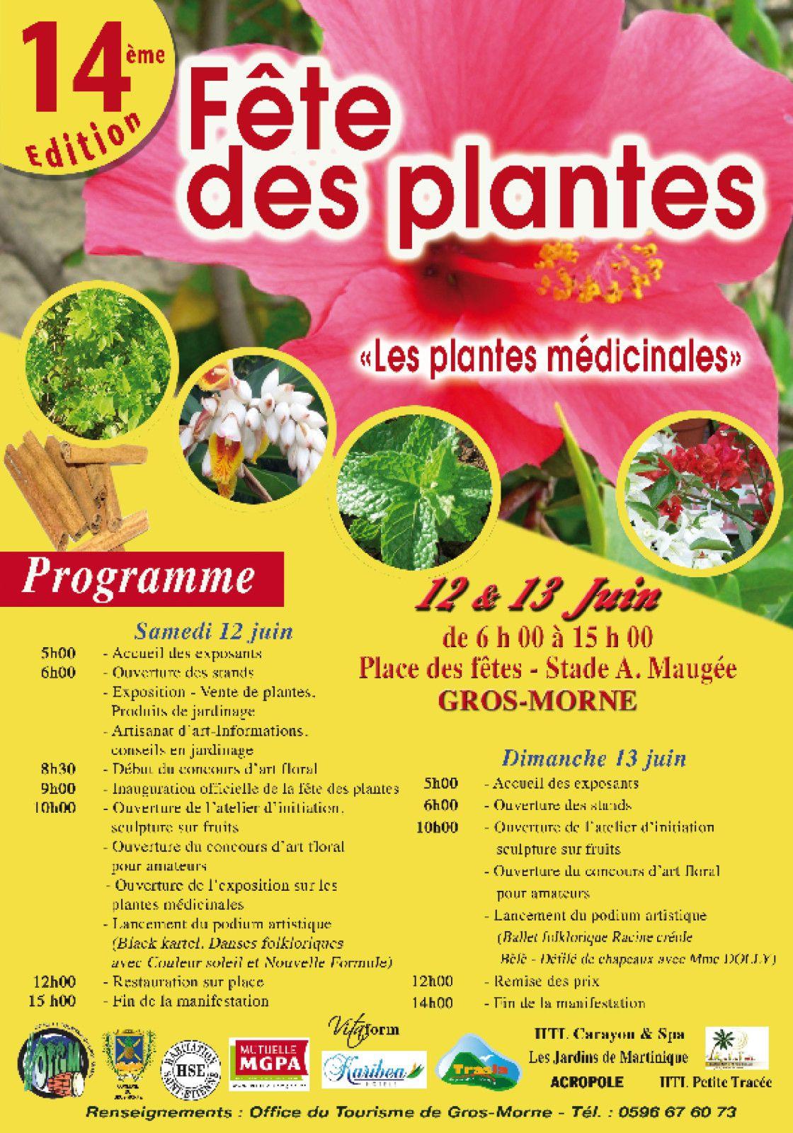 F tes des plantes 2010 12 et 13 juin le blog de la ville du gros morne - Fete des plantes chantilly ...