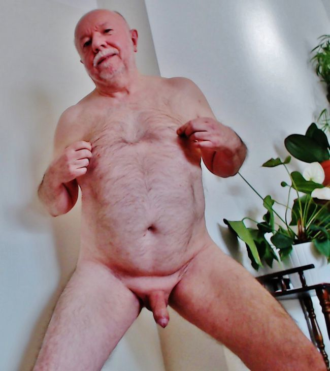 exhib avion mature et gay