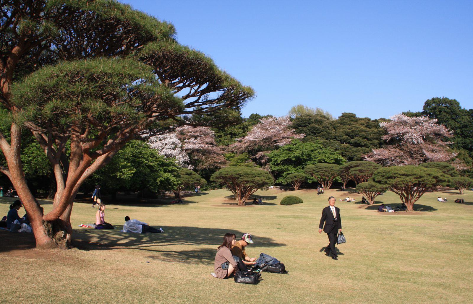ALBUM - JAPON 2009