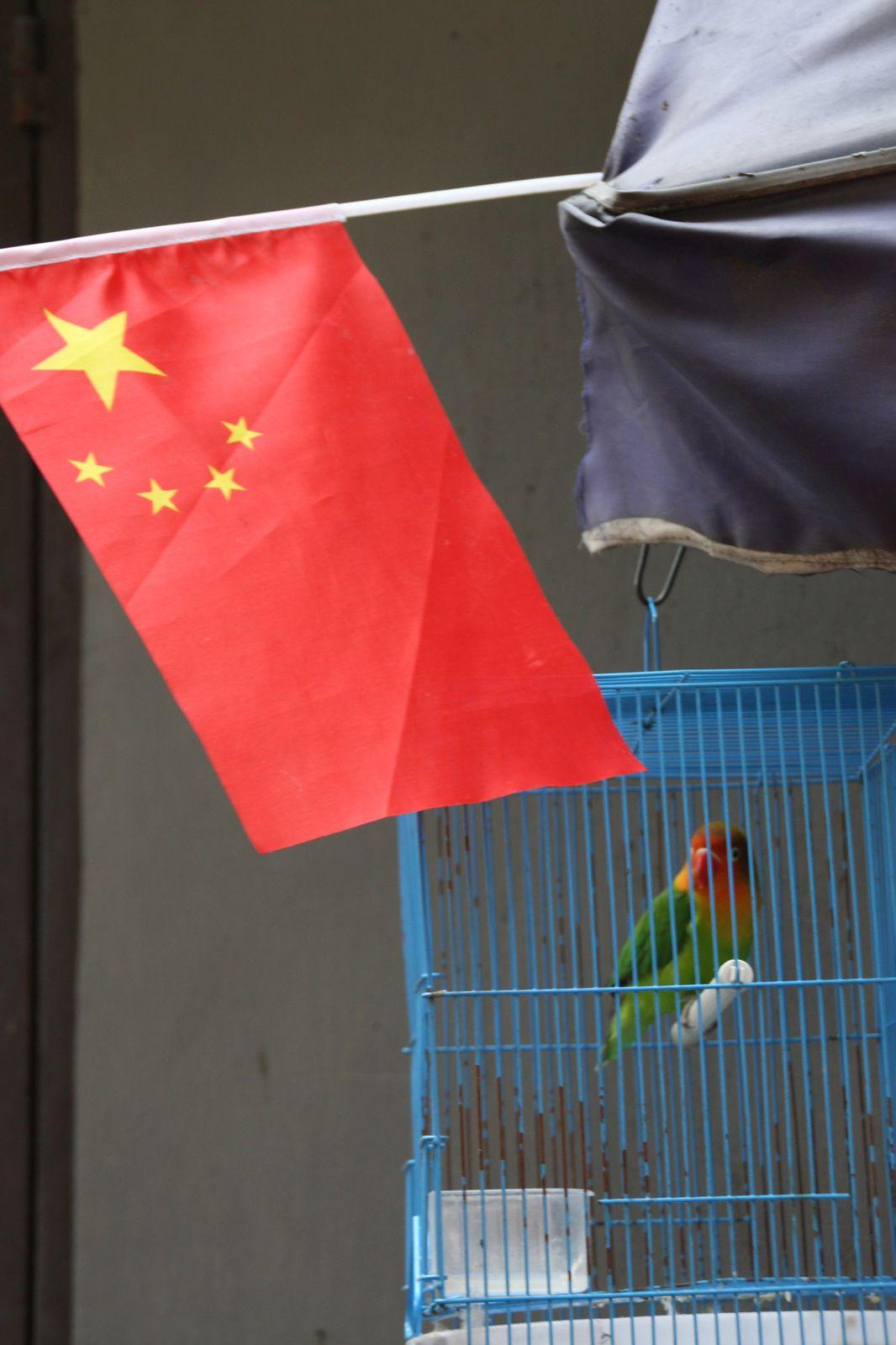 ALBUM - CHINE 2010 : UN SAMEDI A HANGZHOU