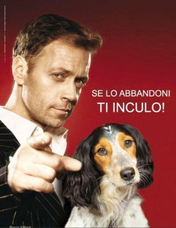 rocco-et-les-chiens.jpg