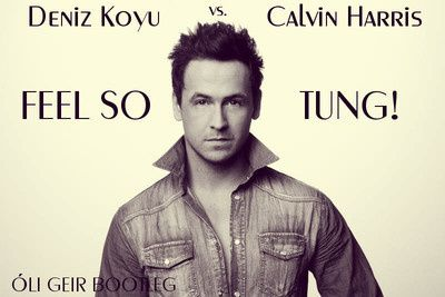 Deniz-Koyu-vs-Calvin-Harris---Feel-so-Tung---Dj-Oli-Geir-B.jpg