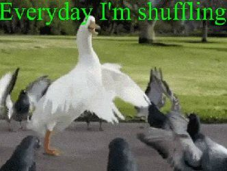 Everyday-I-m-Shufflin-.jpg