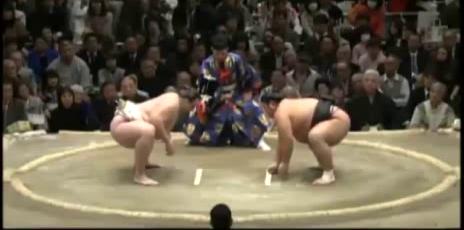 un-sumo-dans-la-gueule.png