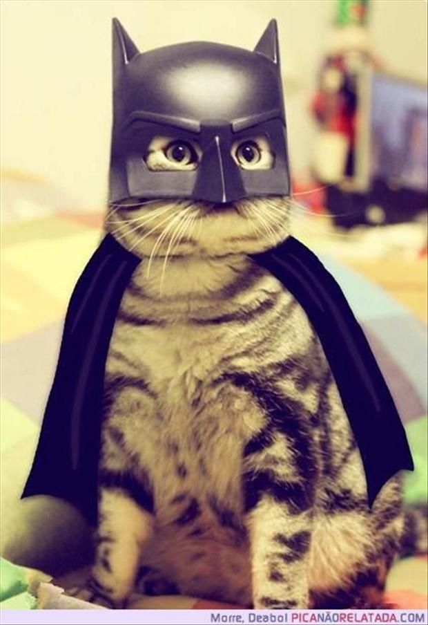 chat-batman.jpg