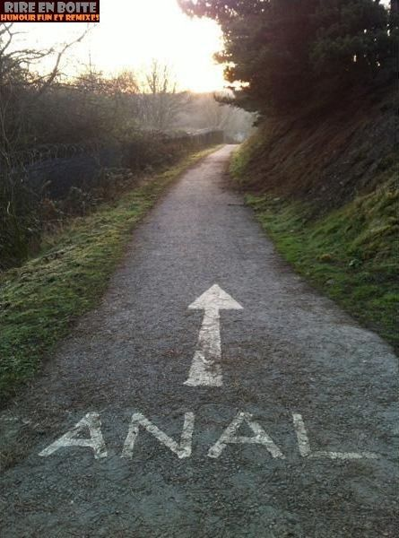 direction-anal.jpg