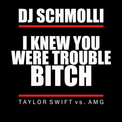 DJ-Schmolli---I-Knew-You-Were-Trouble-Bitch--Taylor-Swift-v.jpg