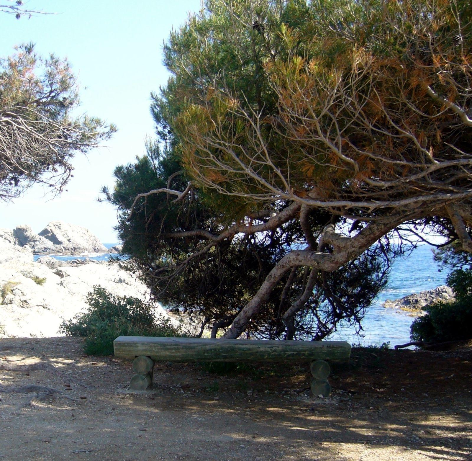 Album - Cote-d-Azur Provence - 2