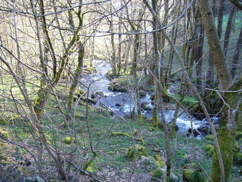 randonnées aux quatre saisons dans les Vosgesphotos philae (jo)