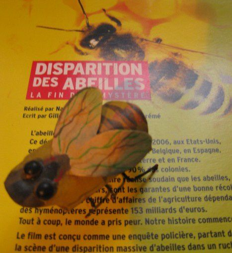 003 r CD-Rom Sciences-Avenir Disparition Abeilles