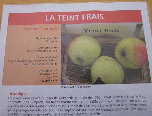 200 r HAUT FICHE Teint Frais