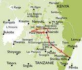 carte safari Bongo