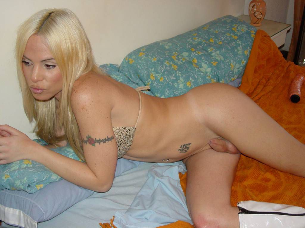 Transsexuelles - 2Folie le sexe en photo et video porno