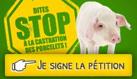 bouton-Petition2014.jpg