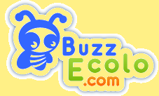 societe-civile-buzzecolo-00-art-copie-1.png