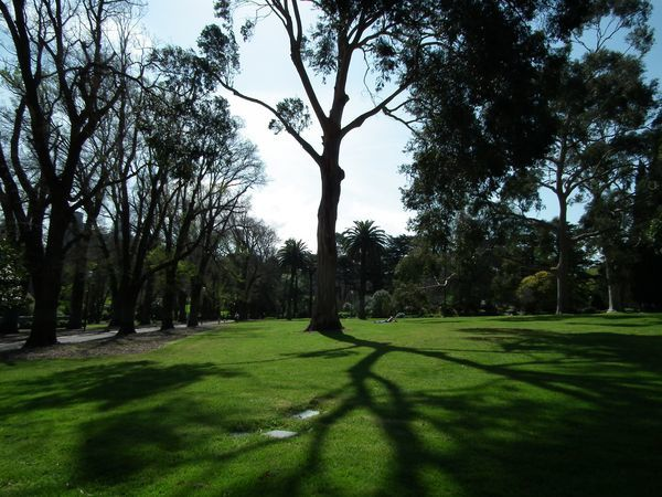 2013.09.29 - Treasury and Fitzroy gardens (19)