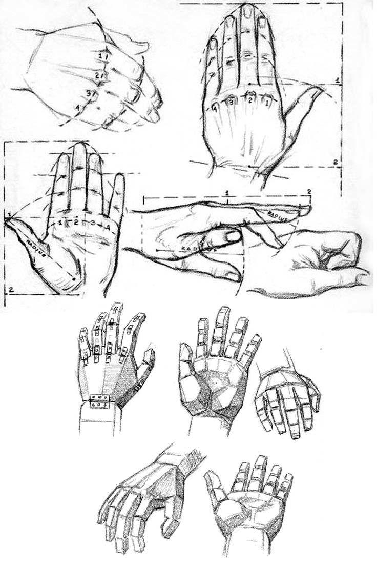 Comment dessiner des doigts - Dessin de mains ...