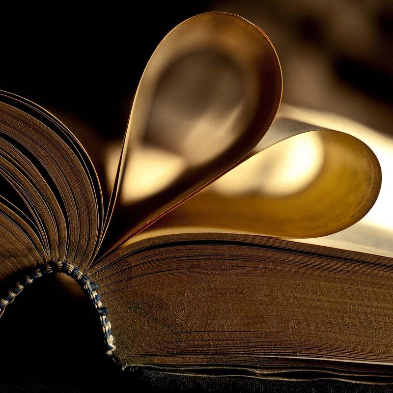 love_for_books_by_bourboninyoureyes-d3avu88.jpg