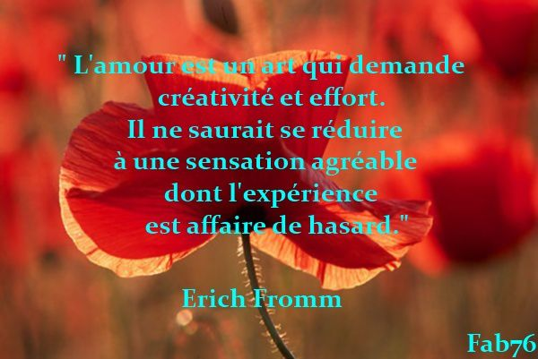 pensee-amour-fromm.jpg