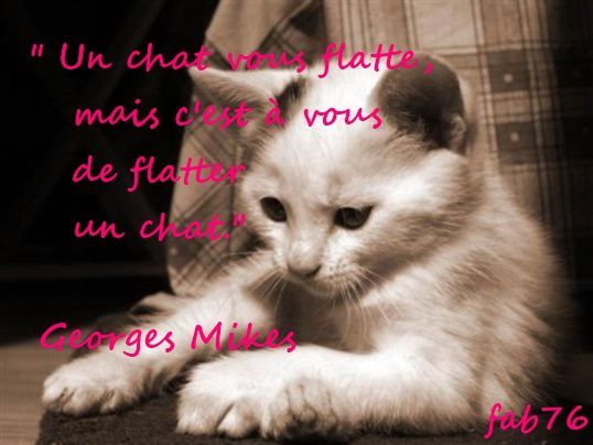 chat-mikes.jpg