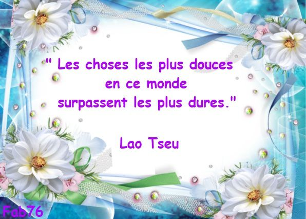 les-choses-les-plus-douces-lao-tseu.jpg