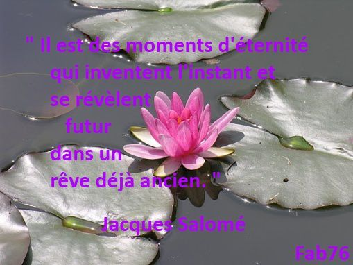 moments-d-eternite-jacques-salome.jpg
