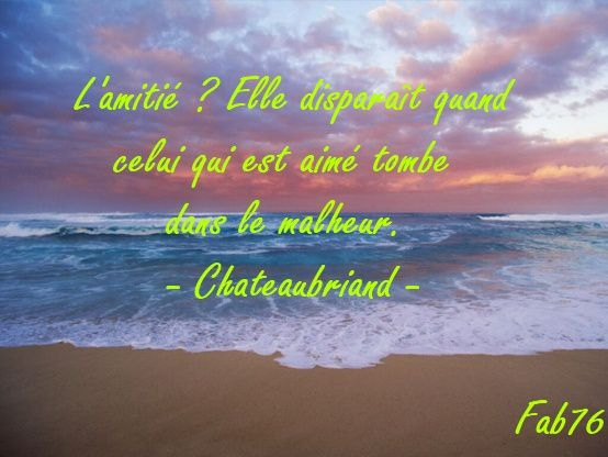 chateaubriand-amitie.jpg