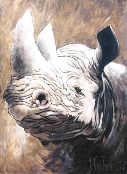 Décoratives paintings, fresco, african animals, big size, '' RHINOCEROS '', picture by Alexandre Houllier artist painter and drawer