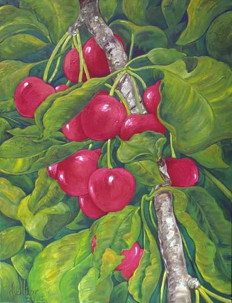 Toile d'étude décorative de fruits; cerises sur l'arbre. Cherry in a tree, oil on canvas, '' CERISIERS ''. Painting by Alexandre Houllier, french artist drawer and painter from provence