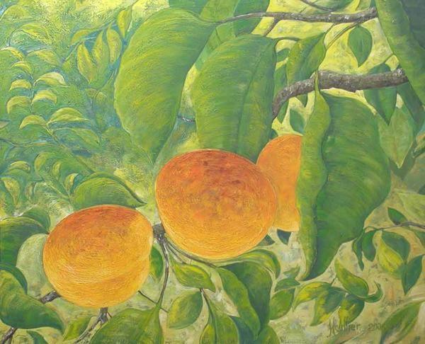 Huile sur toile, paysages décoratifs, Fruits et légumes, abricots sur l'arbre. Le tableau '' ABRICOTIERS ''. Painting by Alexandre Houllier, french artist drawer and painter from provence