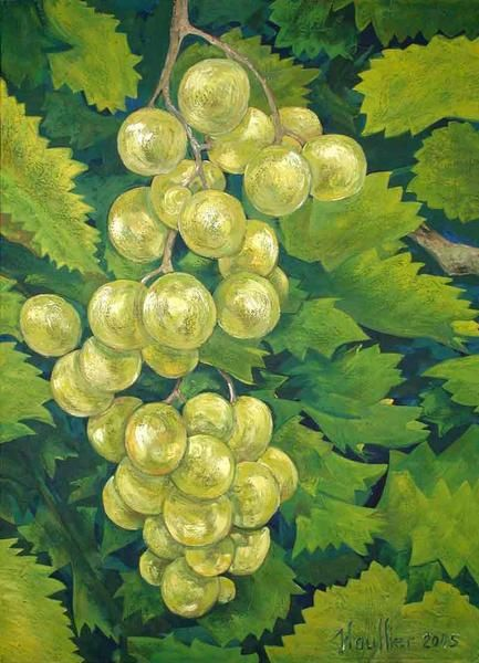 Oils on canvas, Décoratives paintings, Végétables and fruts, grapes. Le tableau '' RAISIN BLANC ''. Painting by Alexandre Houllier, french artist drawer and painter from provence