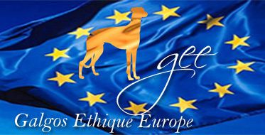 logo-bleu-galgos-ethique-europe-web4match-373.jpg