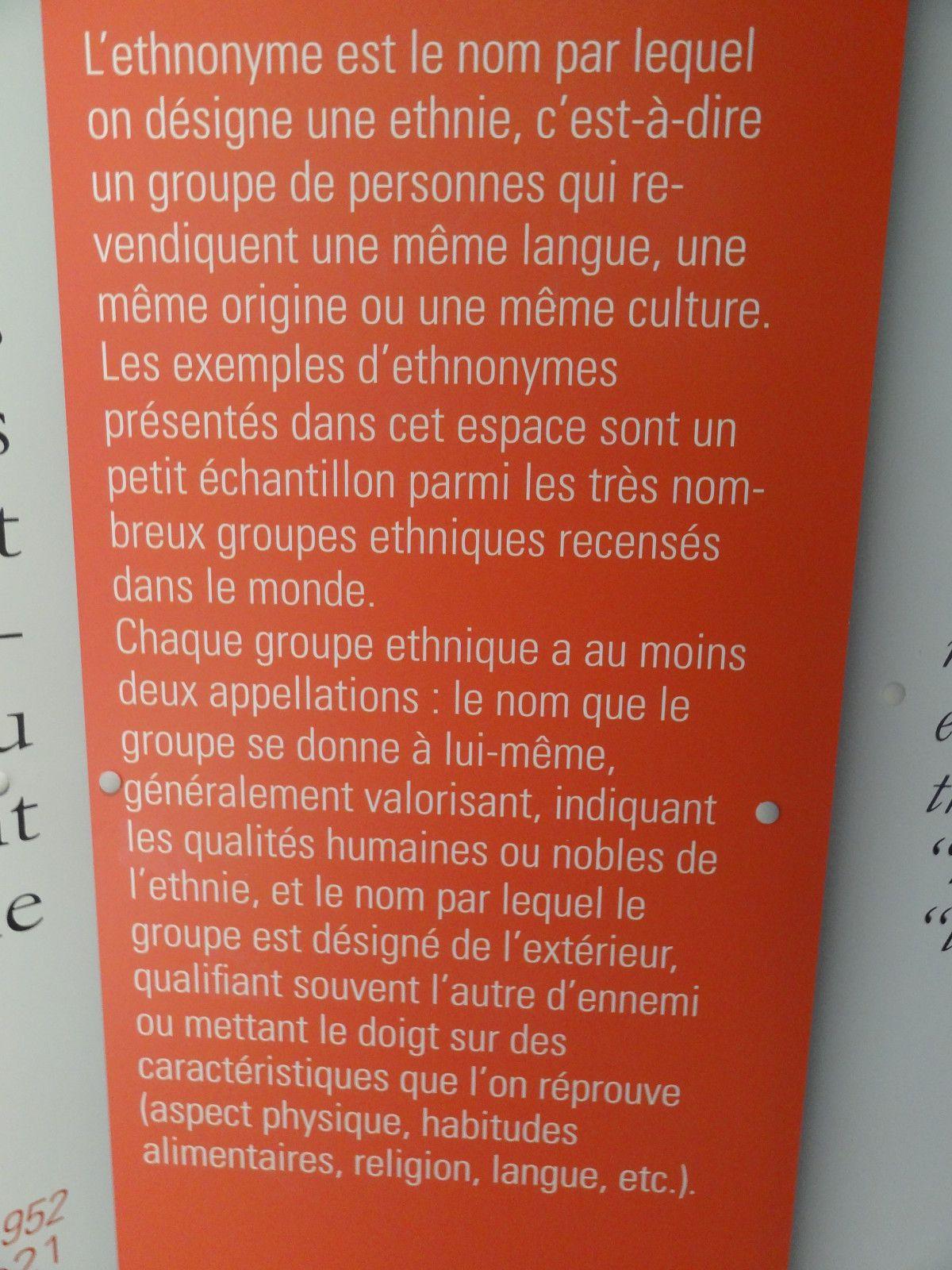 """Le 11 octopbre 2013, les Premières L de l'Iroise ont visité l'exposition """"Tous des sauvages!"""" à l'abbaye de Daoulas."""