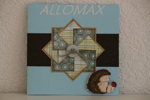 ALLOMAX-copie-1.jpg