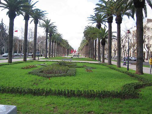 avenue-centrale-fes.jpg