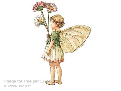 Fee-des-Paquerettes-Cicely-Mary-Barker.jpg