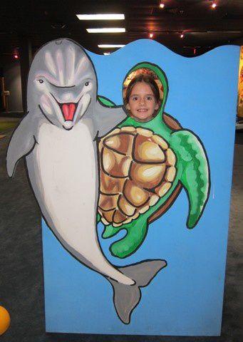Dolphin tale (16)